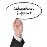 Litigation Support Options